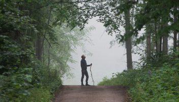 Idź na spotkanie do lasu!