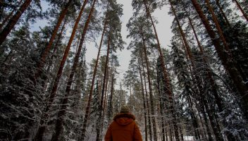 Finlandia i Podlaskie: Zobacz 10 uderzających podobieństw